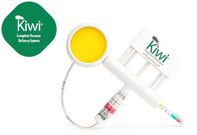 Kiwi Vacuum Delivery System
