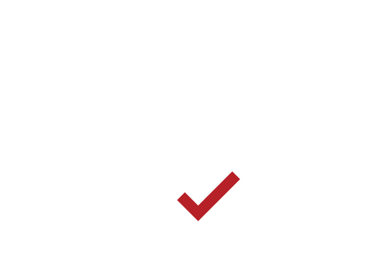 Red Check Mark PNG